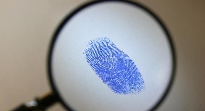 Исследование отпечатков пальцев — дактилоскопия